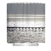 Light Wash Shower Curtain