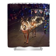 Lighted Pony Shower Curtain