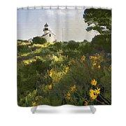 Lighthouse Daisies Shower Curtain
