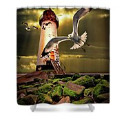 Lighthouse With Seagulls Shower Curtain by Meirion Matthias