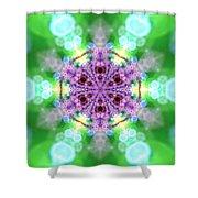 Lightmandala 6 Star 3 Shower Curtain