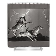 Lightning At Horse World Shower Curtain