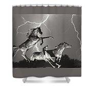 Lightning At Horse World Shower Curtain