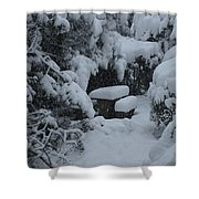 A Snowy Secret Garden Shower Curtain