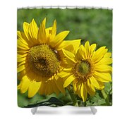 Like Two Smiles In Bloom Shower Curtain