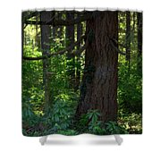 Lil' Piece Of Heaven Shower Curtain