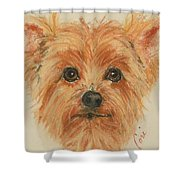 Lil Rascal Shower Curtain