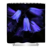Bluebell Abyss Shower Curtain