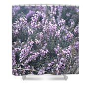 Lilac Bells Shower Curtain