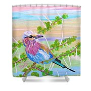 Lilac Breasted Roller In Thorn Tree Shower Curtain