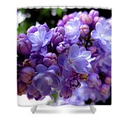 Lilac Flower Shower Curtain