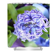 Lilac In Bloom Shower Curtain