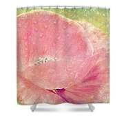 Lilac Poppy Shower Curtain