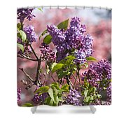 Lilacs And Dogwoods Shower Curtain