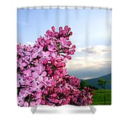 Lilacs And Green Pastures Shower Curtain
