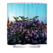 Lilacs And Sunset To Blue Hour Transition Over Gamla Stan In Stockholm Shower Curtain