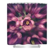Lilacs Gone Wild Shower Curtain