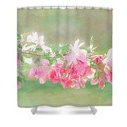 Lilacs In Sunshine Shower Curtain