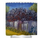Lilacs On A Fence  Shower Curtain