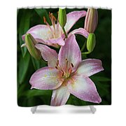 Lilies And Raindrops Shower Curtain