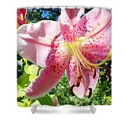 Lilies Art Prints Pink Lily Flowers 2 Giclee Prints Baslee Troutman Shower Curtain