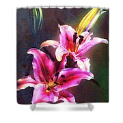 Lilies At Night Shower Curtain