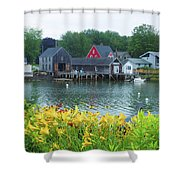 Lilies By The Bay, Cape Porpoise Me Shower Curtain