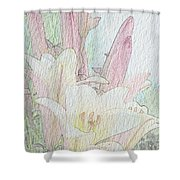 Lilies. Flowers And Buds. Shower Curtain