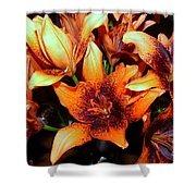 Lilies In The Shadow Shower Curtain