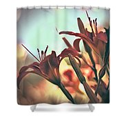 Orange Lilies Of The Day Shower Curtain