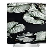 Lilies Of The Deep Shower Curtain
