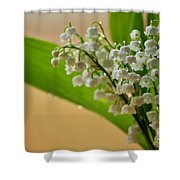 Lilies Of The Valley 1 Shower Curtain