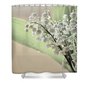 Lilies Of The Valley 2 Shower Curtain