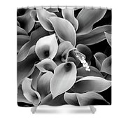 Lilies Of The Vallley Shower Curtain