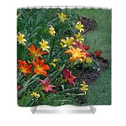 Lilies On Parade Shower Curtain