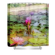 Lillie's Of Capistrano Shower Curtain by Michael Hope