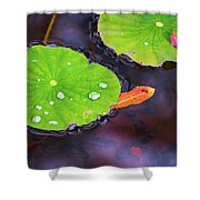 Lillies On Water Shower Curtain