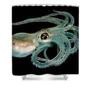 Lilliput Longarm Octopus Shower Curtain