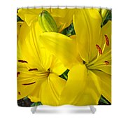 Lilly Flowers Art Prints Yellow Lilies Floral Baslee Troutman Shower Curtain