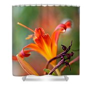 Lilly Flowers Shower Curtain
