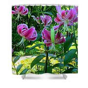 Lilly Love Shower Curtain