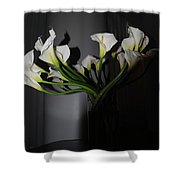 Lilly Of The Dark Shower Curtain