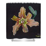 Lily 2 Shower Curtain