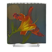 Lily Abstract Dark Background Bright Flower Shower Curtain