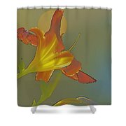 Lily Abstract Medium Background Medium Toned Flower Shower Curtain