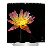 Lily Awakening Shower Curtain