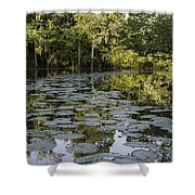 Lily Bend On Blind River Shower Curtain
