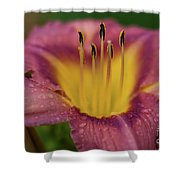 Lily Bloom Close Up Shower Curtain