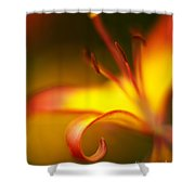 Lily Curls Shower Curtain