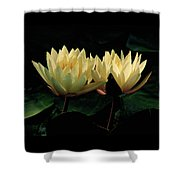 Lily Duet Shower Curtain